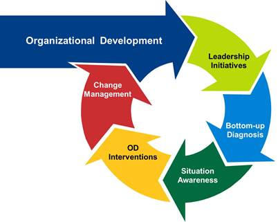 leadership change management thesis