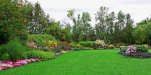Pelatihan Landscape dan Pertamanan